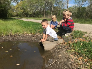 Liam and his cousins looking for tadpoles
